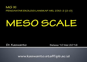 Meso Scale Landscape Ecology 2016