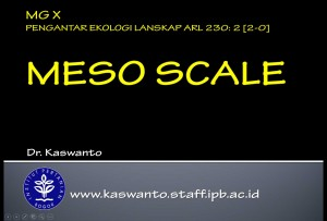 Meso Scale in Landscape Ecology